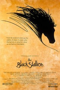 The Black Stallion PAC movie poster