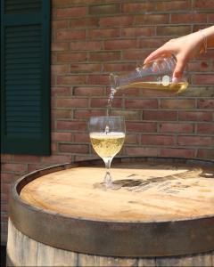 Liquid Alchemy Wine Pour