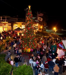 Cannery-Row-Tree-Lighting1-262x300