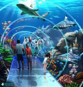 MS Aquarium rendering