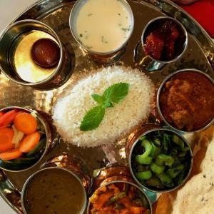 View of rice and various toppings on silver platter at Everest restaurant