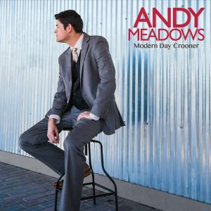 Andy Meadows PAC Live