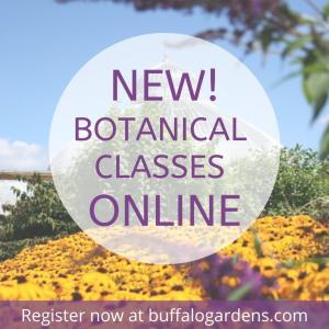 NEW! Botanical Classes