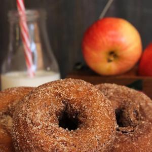 Donut Experiment Apple Cinnamon