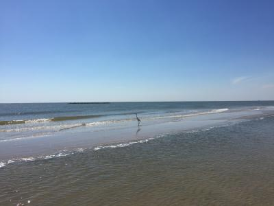 Creole Nature Trail | Beaches