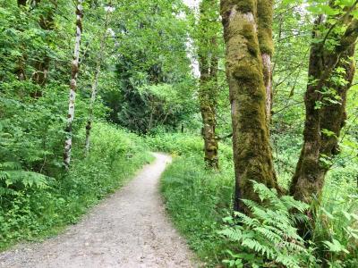 Whipple Creek Trail