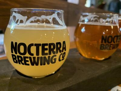 Rounded beer glasses full of brew at Nocterra Brewing Co