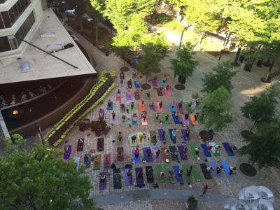Yoga in NOMA Square