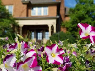4:3 SC Botanical Garden