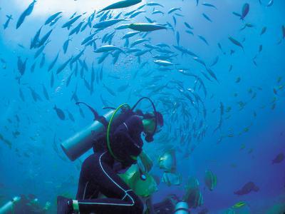 divingsea