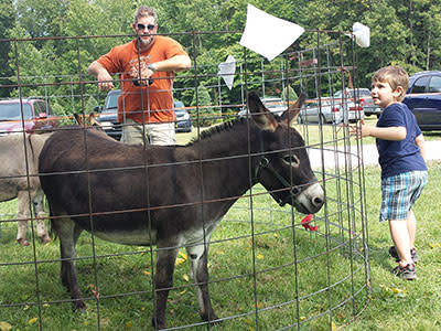 Mini Donkeys are fun and friendly.