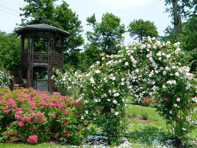 A pavillion sits in a patch of flowers at Sonnenberg Garden and Mansion