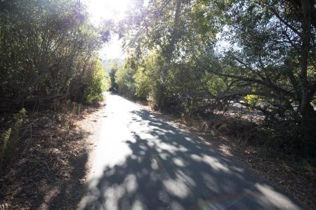 Bob Jones Trail