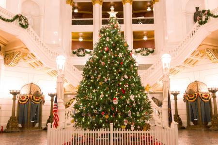 christmas-tree-capitol-harrisburg-pennsylvania