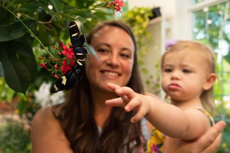 hershey-gardens-butterfly-atrium-hershey-family