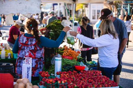 Avila Beach Farmers Market