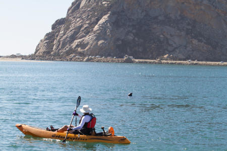 Morro Bay kayaking