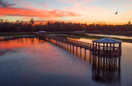 Cattail Marsh Boardwalk at sunset - photo by Tim Sudela