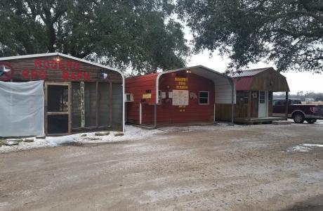 Roger's BBQ Barn