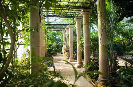 Beaumont Botanical Garden Walk