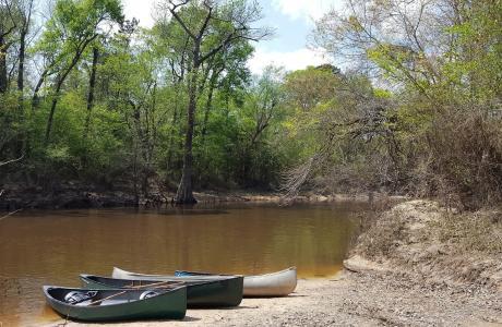 Paddling Village Creek