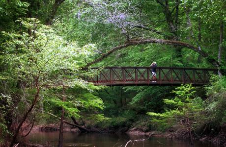 Village Creek bridge on the Kirby Nature Trail
