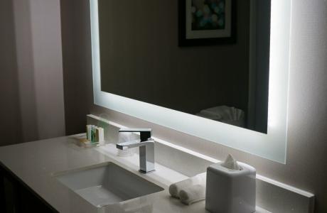 Holiday Inn Medical Bathroom