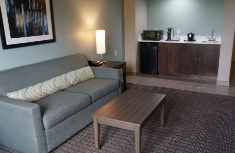 Holiday Inn Medical Living