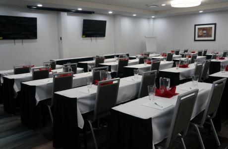 Holiday Inn Medical Meeting 2