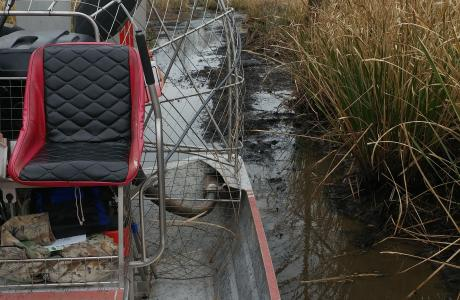 Airboat Trails