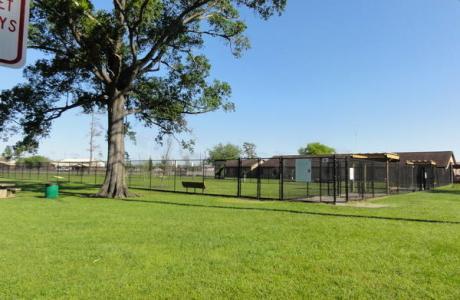 ida reed dog park