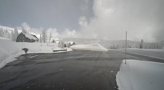 Mt Rainier East Live Webcam