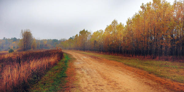 Lowes Creek In Eau Claire, Wisconsin Jereme Rauckman via Flickr