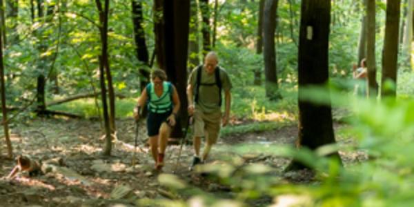Peters Mountain Hiking couple
