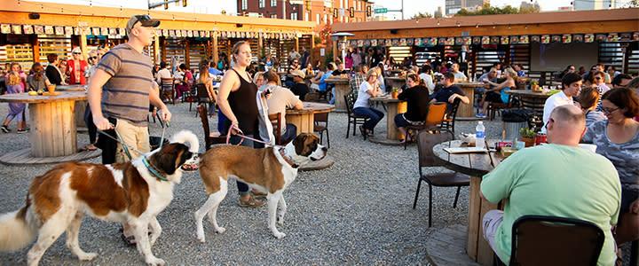 Dogs being walked at Bleu Garten's outdoor patio