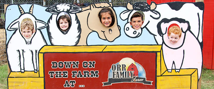 Orr Family Farm