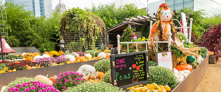 Myriad Gardens - Pumpkinville