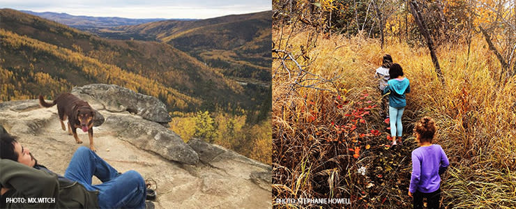 Fall Hiking and geochaching In Fairbanks Alaska