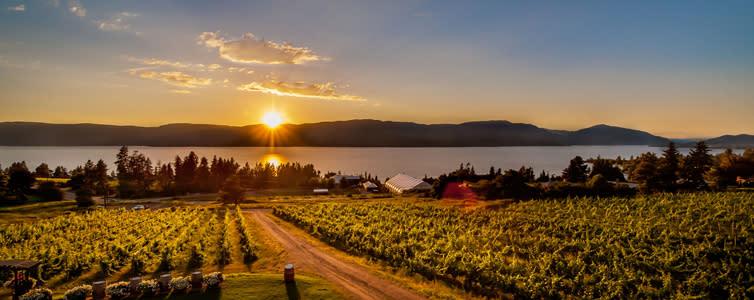 Kelowna Wine Trails - Test