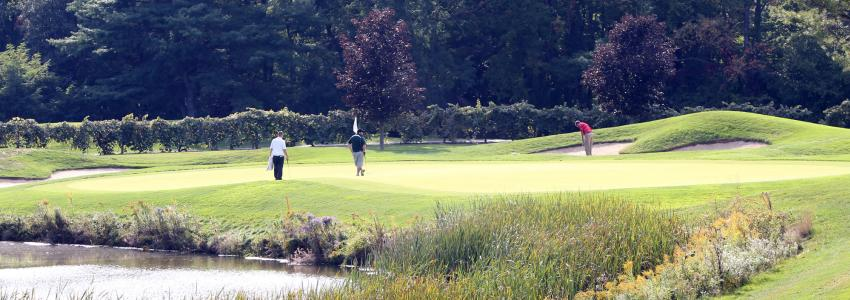 golfers enjoy a round at Bristol Harbour's golf course