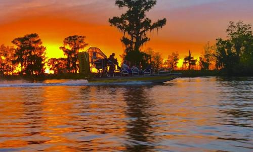 Ultimate Swamp Adventures Airboat