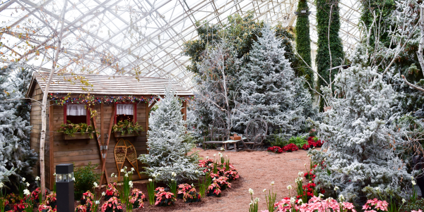 Holidays at Botanical