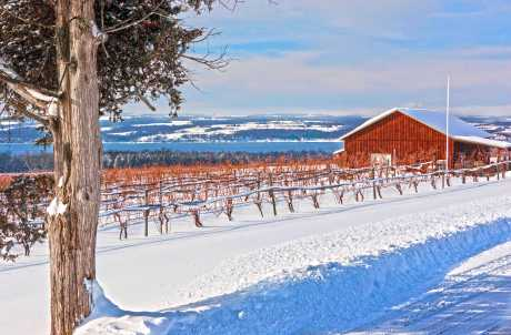 Long Point Winery in the Winter