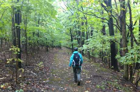 Rob's Trail Preserve