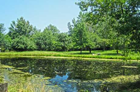 Cayuga Community College Nature Trail for TourCayuga