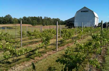 Izzos White Barn Winery for TourCayuga