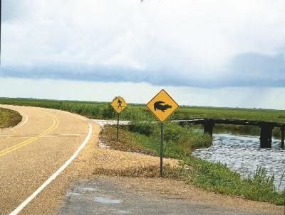 Creole-Nature-Trail-All-American-Road