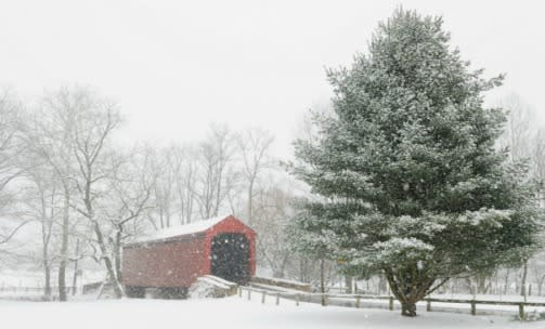 Covered Bridge Snow Scene