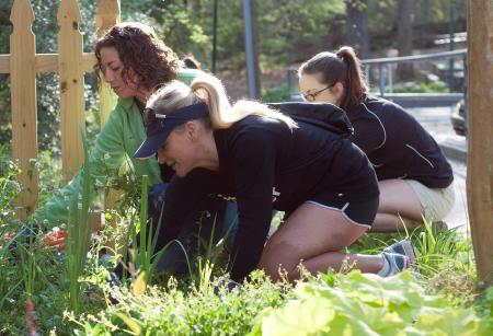 Planting Community Garden