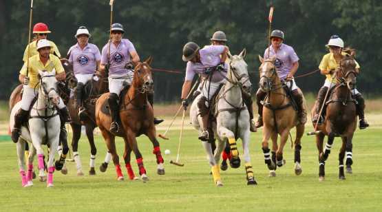Saratoga Polo competition